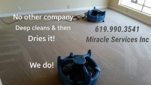 Fast Dry carpet cleaning san diego