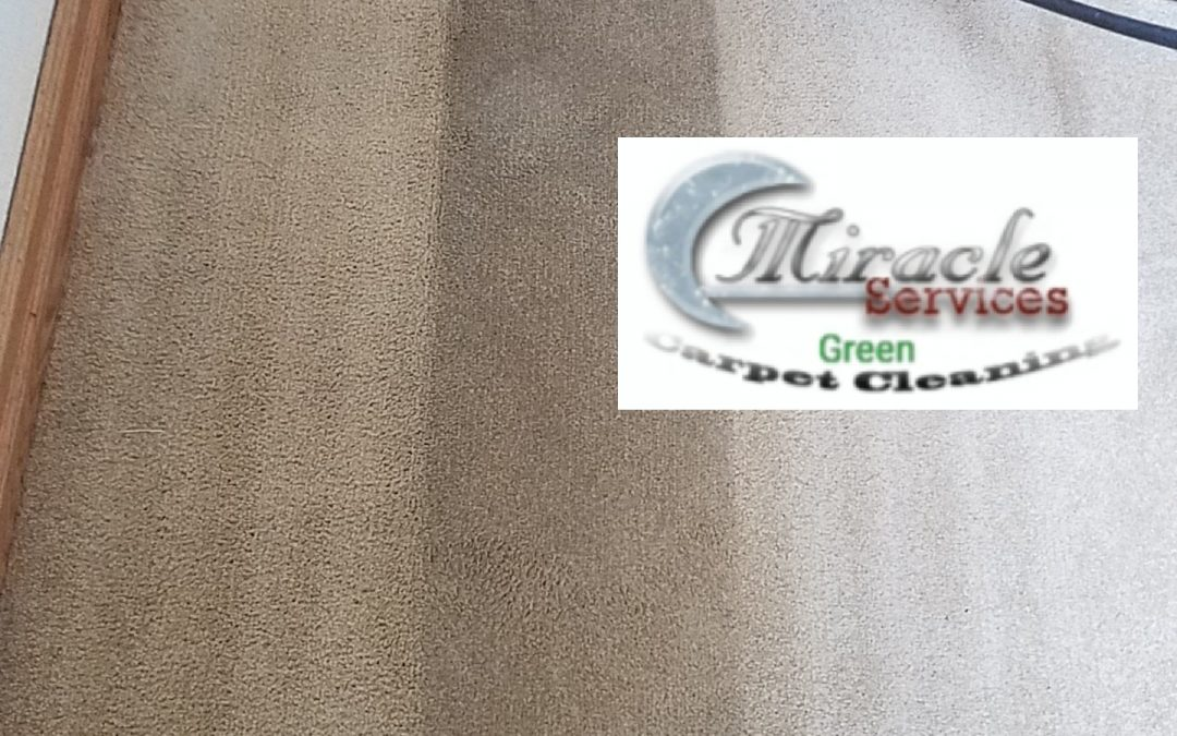 Carpet Cleaning Mira Mesa | Tile Cleaning