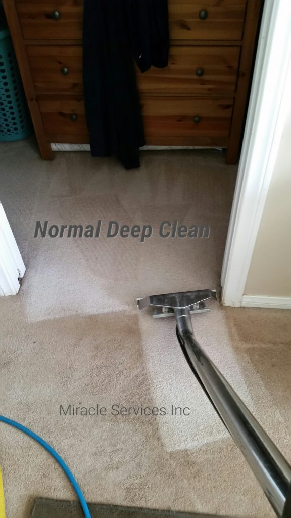 Deep carpet cleaning san diego