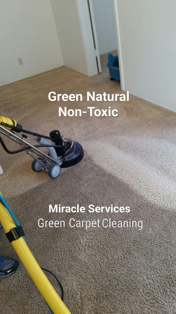 Green organic carpet cleaning