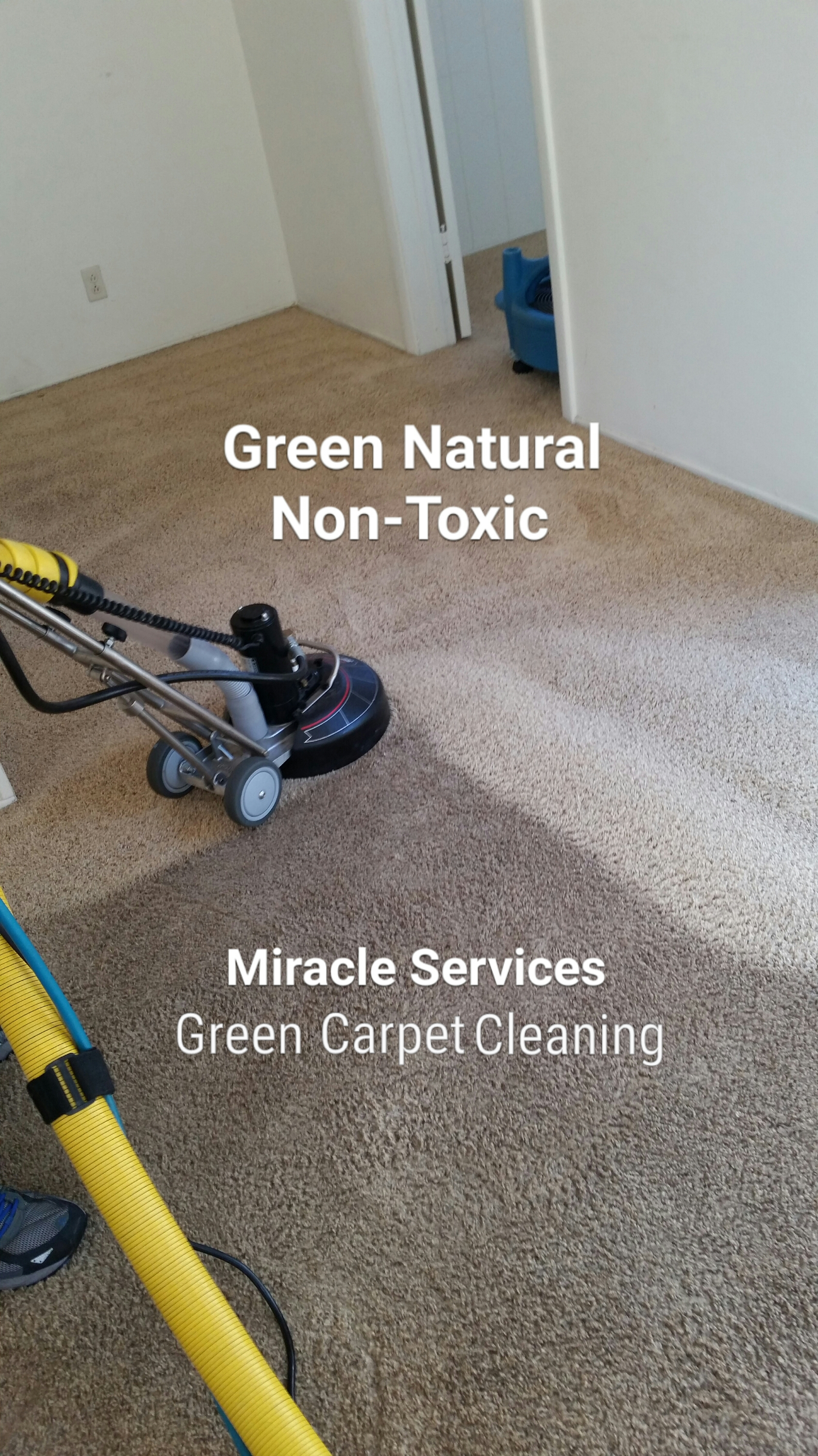 Rotary carpet extraction