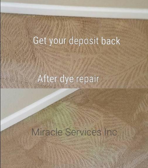 Carpet bleach spot dye