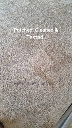 Carpet stain patch