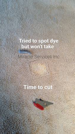 Carpet stain repair