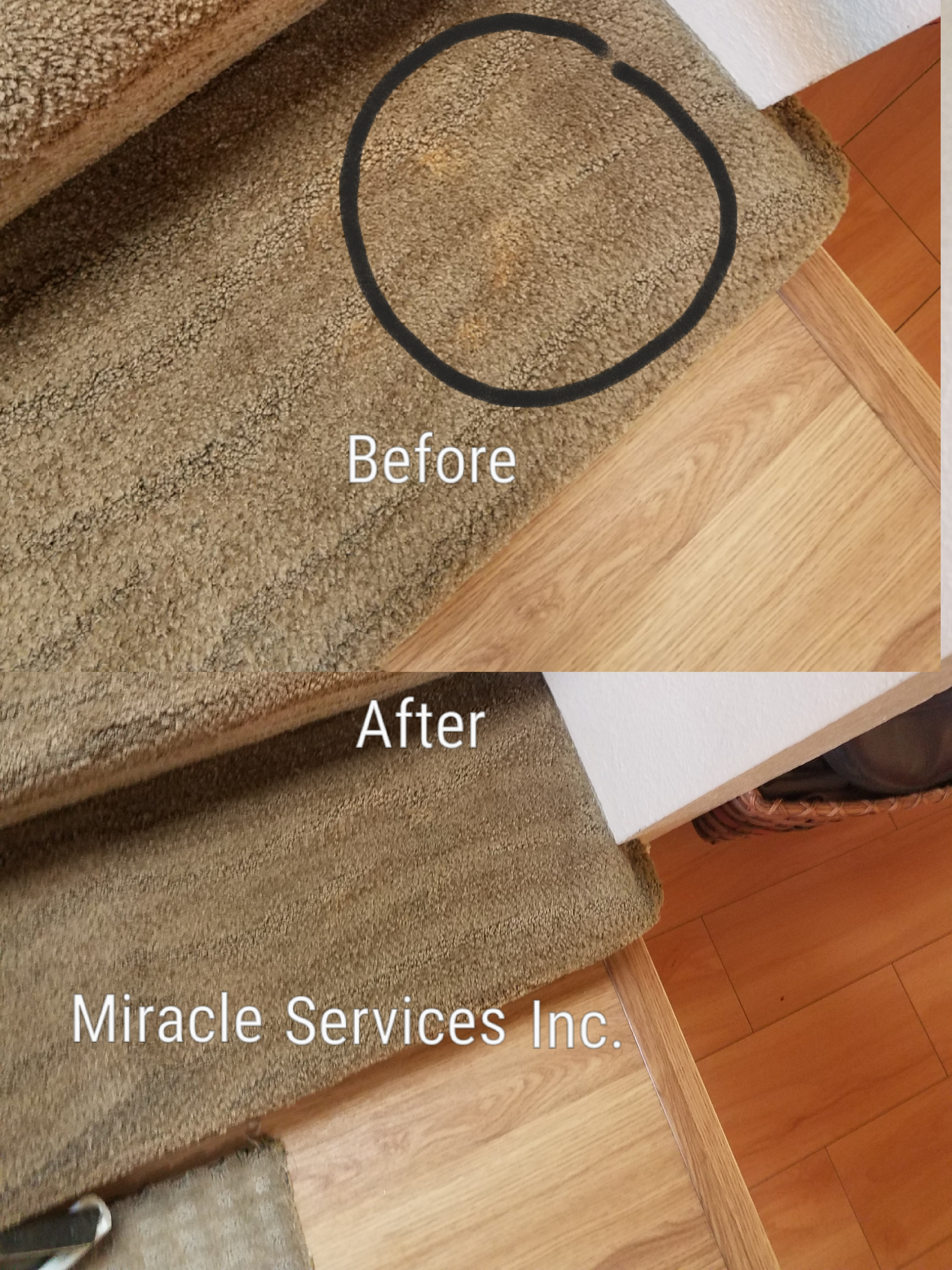 How To Get A Bleach Stain Out Of Brown Carpet Review Home Co