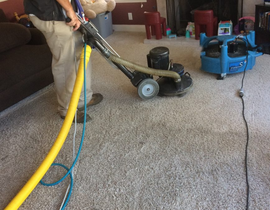 San Diego Natural Carpet Cleaning