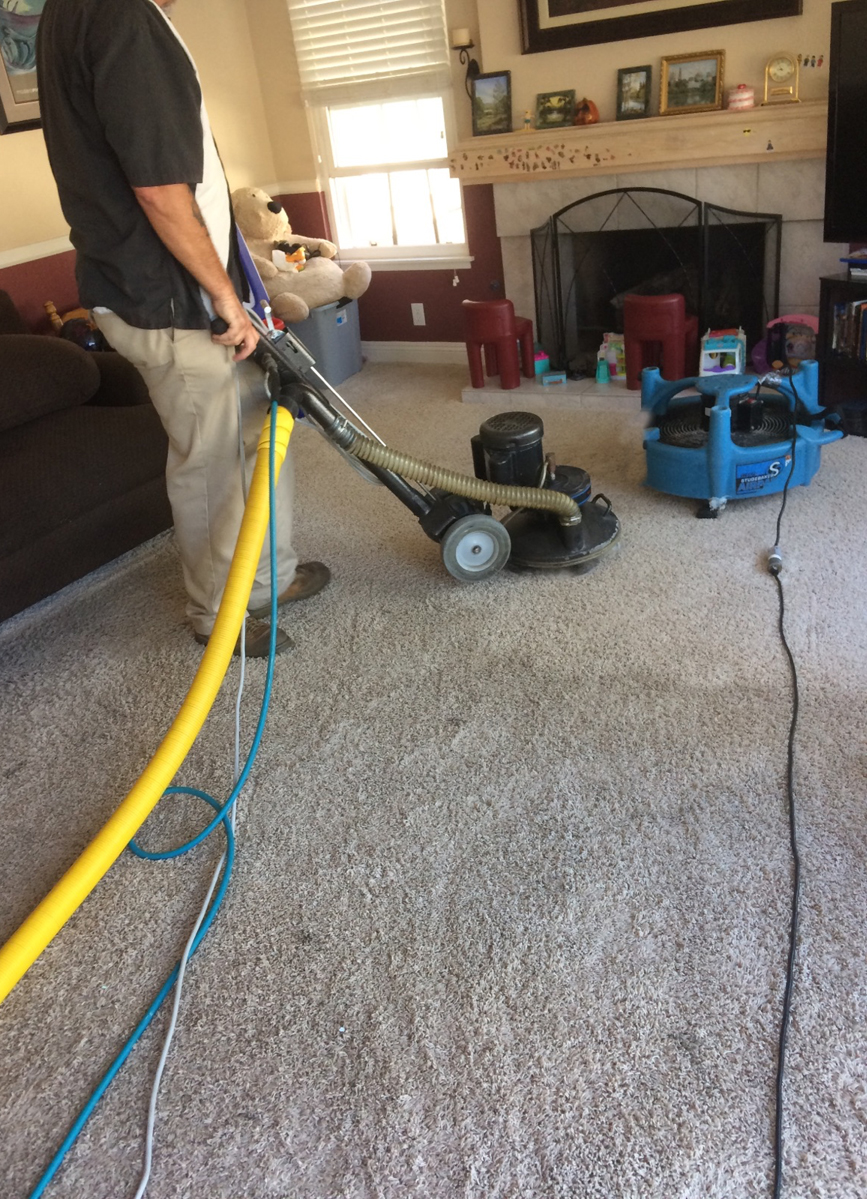 Person using vacuum on carpet