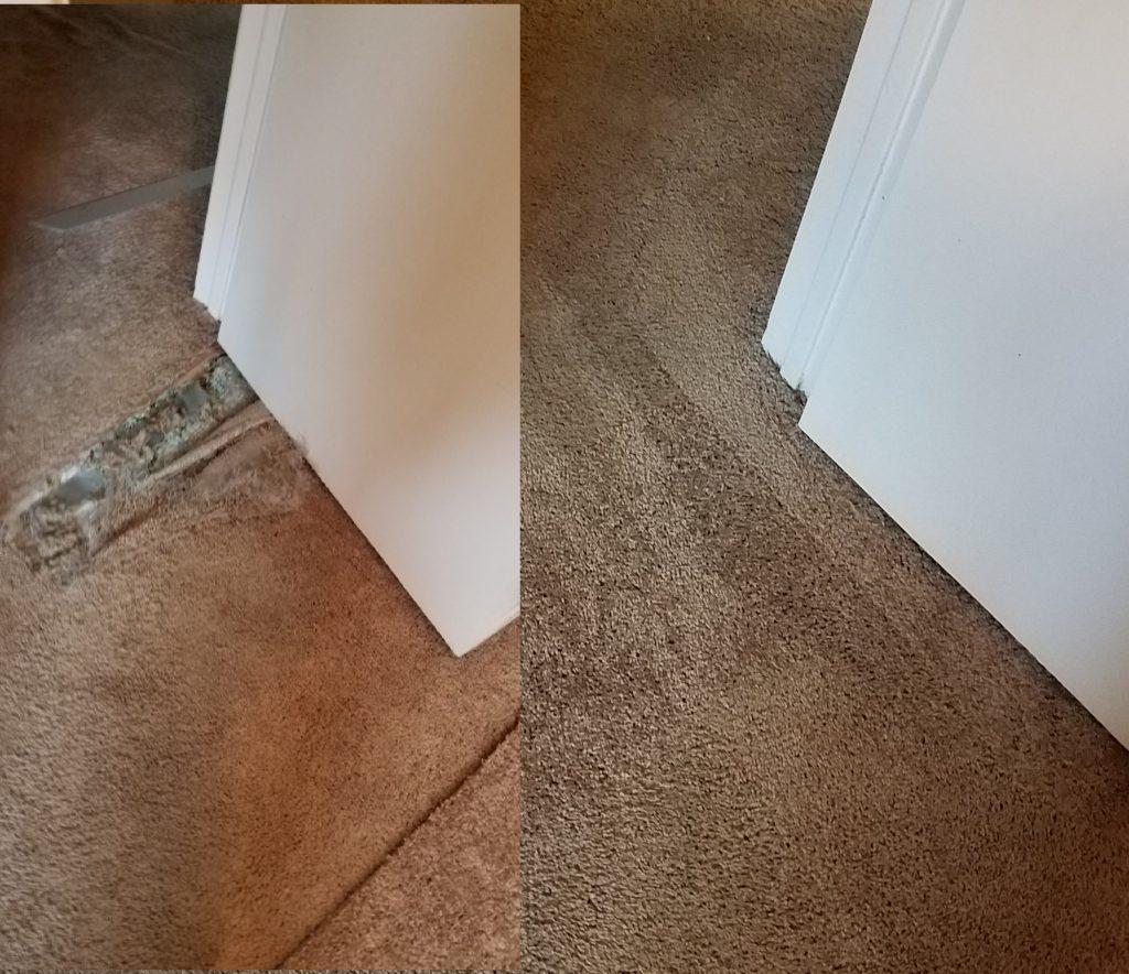 Carpet pet damage patched