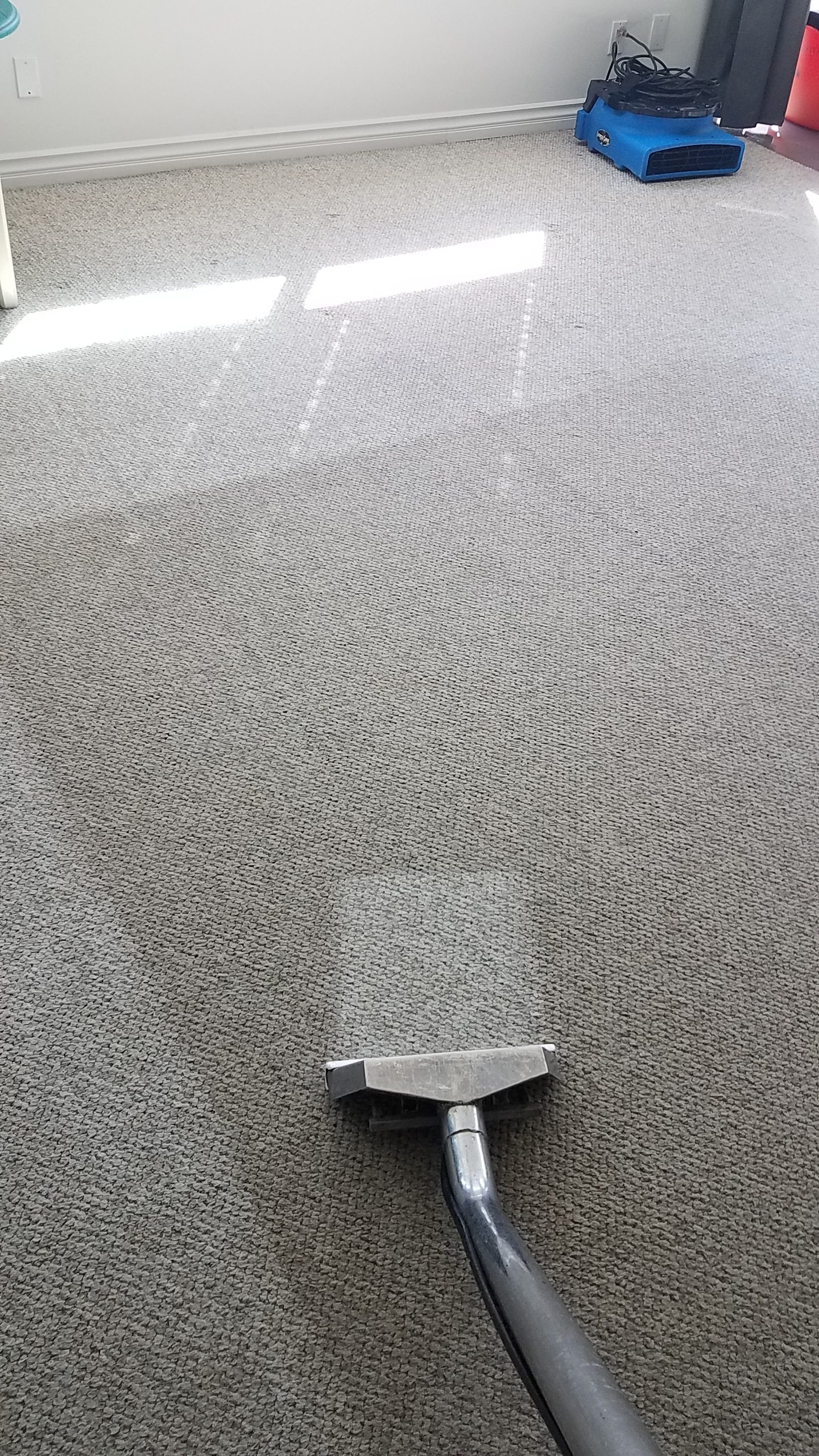 No residue left in carpet