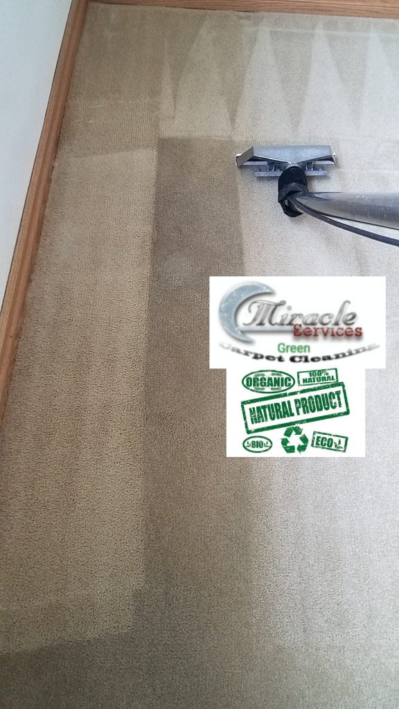 Safe green carpet cleaning by Miracle Services