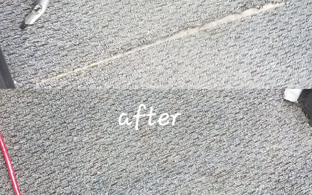 Commercial Carpet Repair San Diego | Commercial Carpet Cleaning
