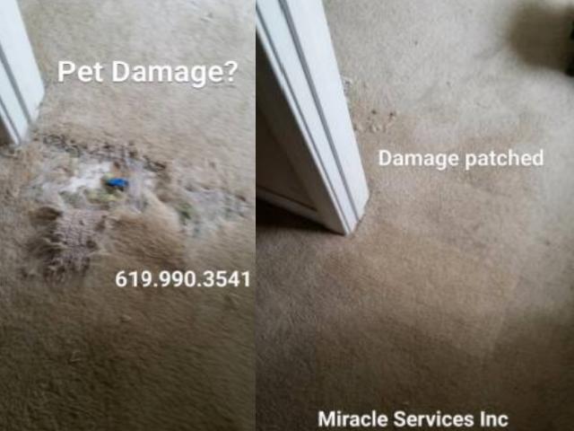 Pet damage repair
