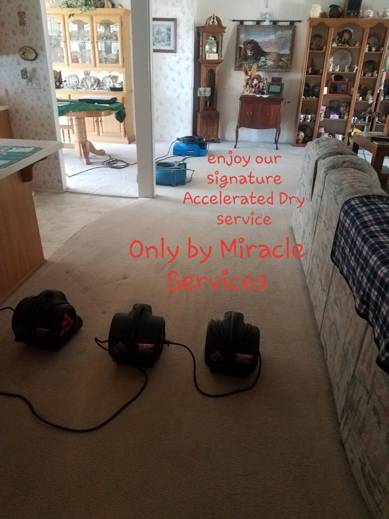 Accelerated drying carpet cleaning