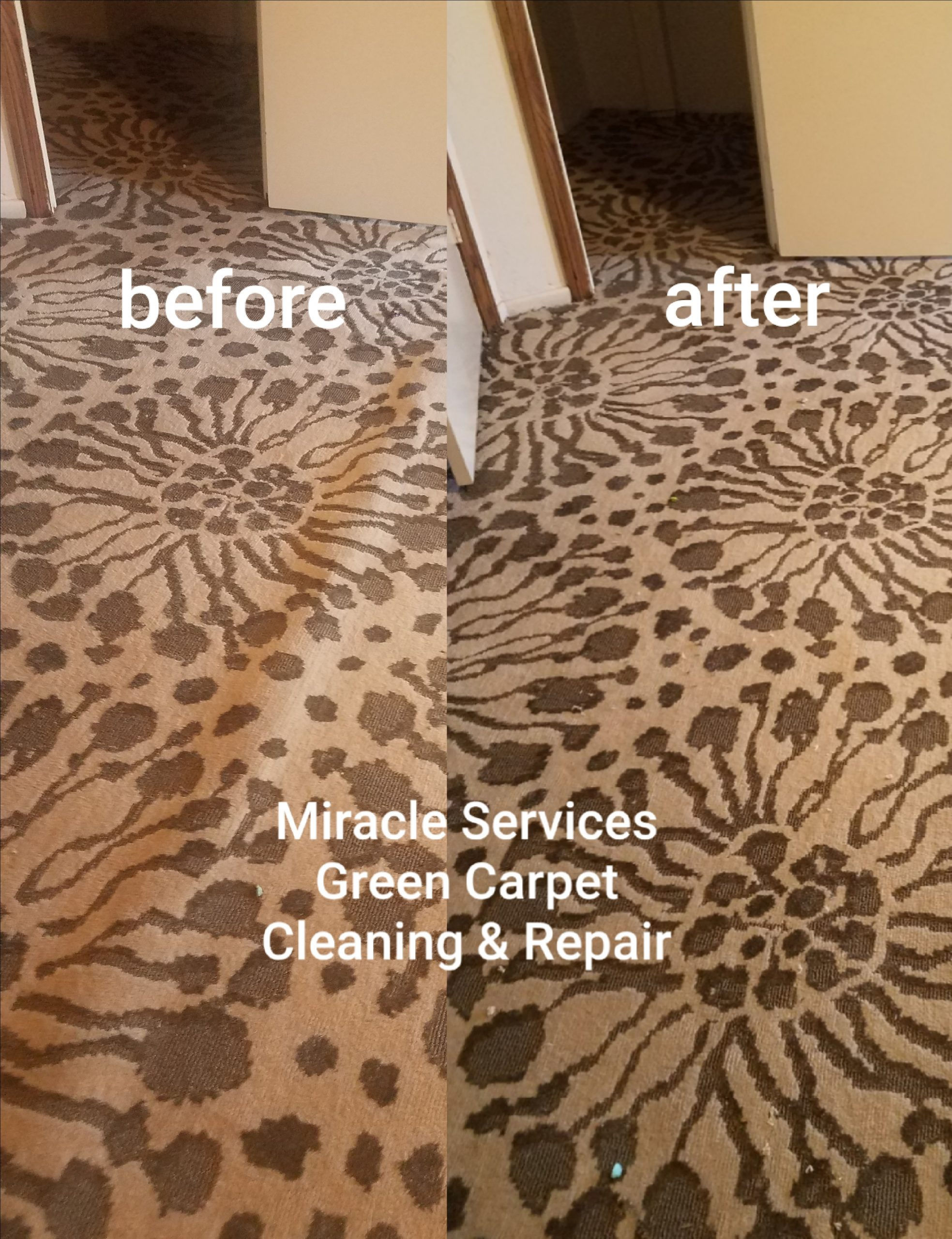 Carpet tightening San Diego