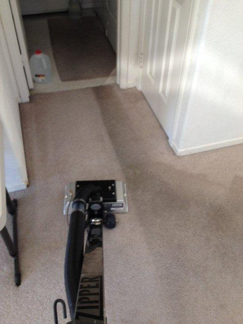 No fragrance carpet cleaning